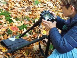 macro probe 24 mm lens